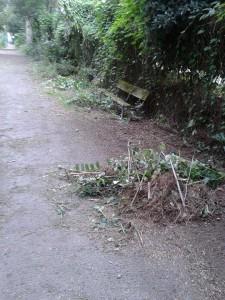 sentiero non pulito