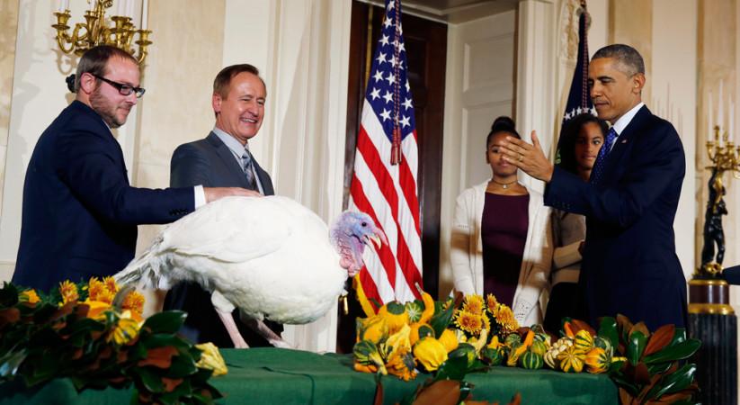 Festa del ringraziamento anche per 100 americani sull - Tacchino stampabile per il ringraziamento ...