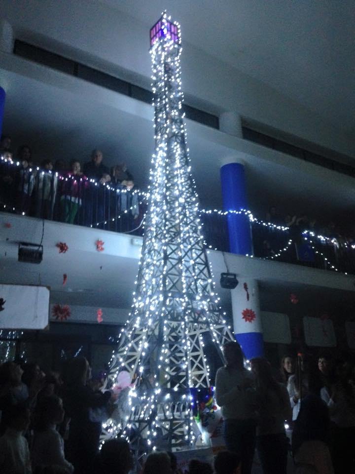 Photo of Procida, inaugurato l'albero della legalità
