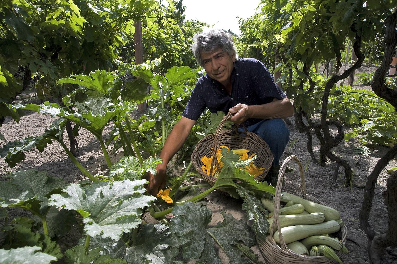 Photo of Azienda Agricola Ruffano: in viaggio tra i sapori di una volta
