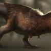 """<span class=""""entry-title-primary"""">Dinosauri e uccelli: qual è il collegamento?</span> <span class=""""entry-subtitle"""">L'ANGOLO DEL NATURALISTA – a cura del dottor Mattia De Vivo*</span>"""