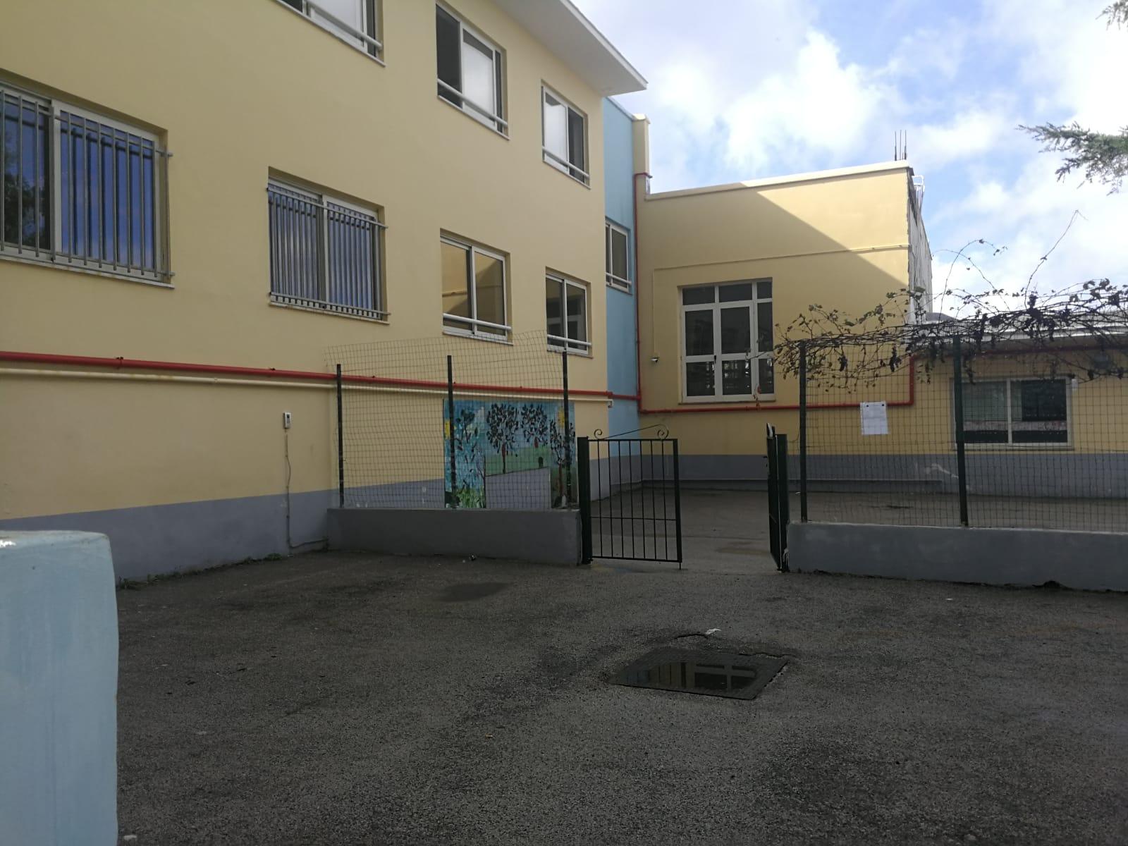 Photo of Topo morto in classe, la preside: «La scuola è pulita e sicura»