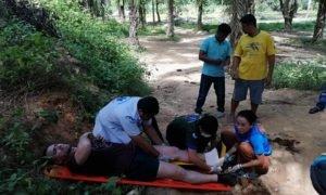 Paura in Thailandia, ischitano gravemente ferito da elefante