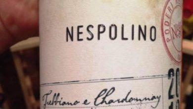 Photo of Il Nespolino, la marmellata e quella storia del '900