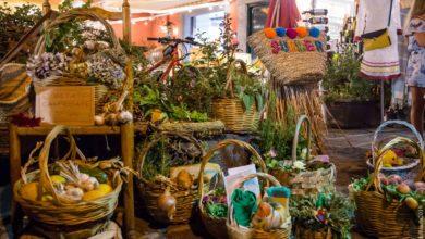 Photo of Ischia sceglie la tradizione: trionfo di cesti intrecciati per la Festa di Sant'Anna