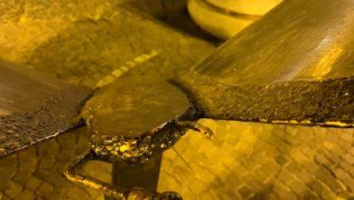 Photo of Lacco Ameno, vandalizzata la scultura di Felice Meo