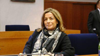 Photo of LA POLEMICA La Di Scala: Trasporti, estendere protocollo a vigili del fuoco e vie del mare