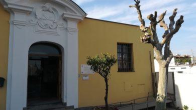 Photo of Ischia natura, cultura e storia: la presentazione a cura della Fidapa