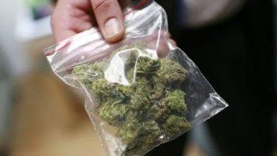 Photo of Quaranta grammi di marijuana, denunciato per spaccio