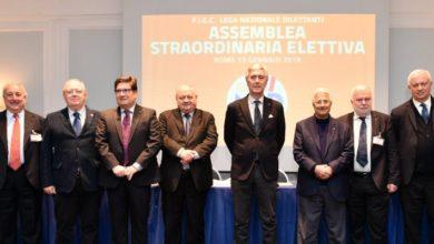 Photo of CALCIO I Comitati Regionali definiscono le proprie proposte: niente retrocessioni