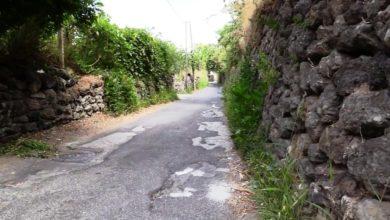 Photo of Erbacce, sporcizia, dissesto stradale e pericoli: così affonda via Campagnano