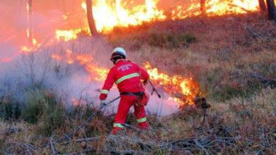 Photo of Rischio incendi, le ordinanze di Ischia e Serrara