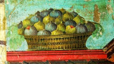 """Photo of Fichi esposti al sole d'agosto per diventare fichi secchi e """"chiuppetelle"""" """"compagni di merenda"""" uva matura e vino cotto della tradizione contadina"""