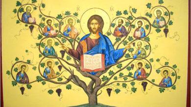 Gesù vite e tralci